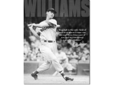 Plaque Publicitaire - Ted Williams - Baseball